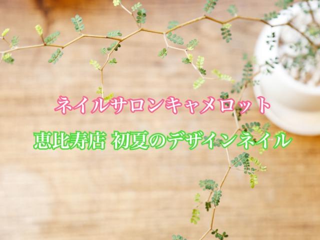 ネイルサロンキャメロット恵比寿店 初夏のデザインネイル